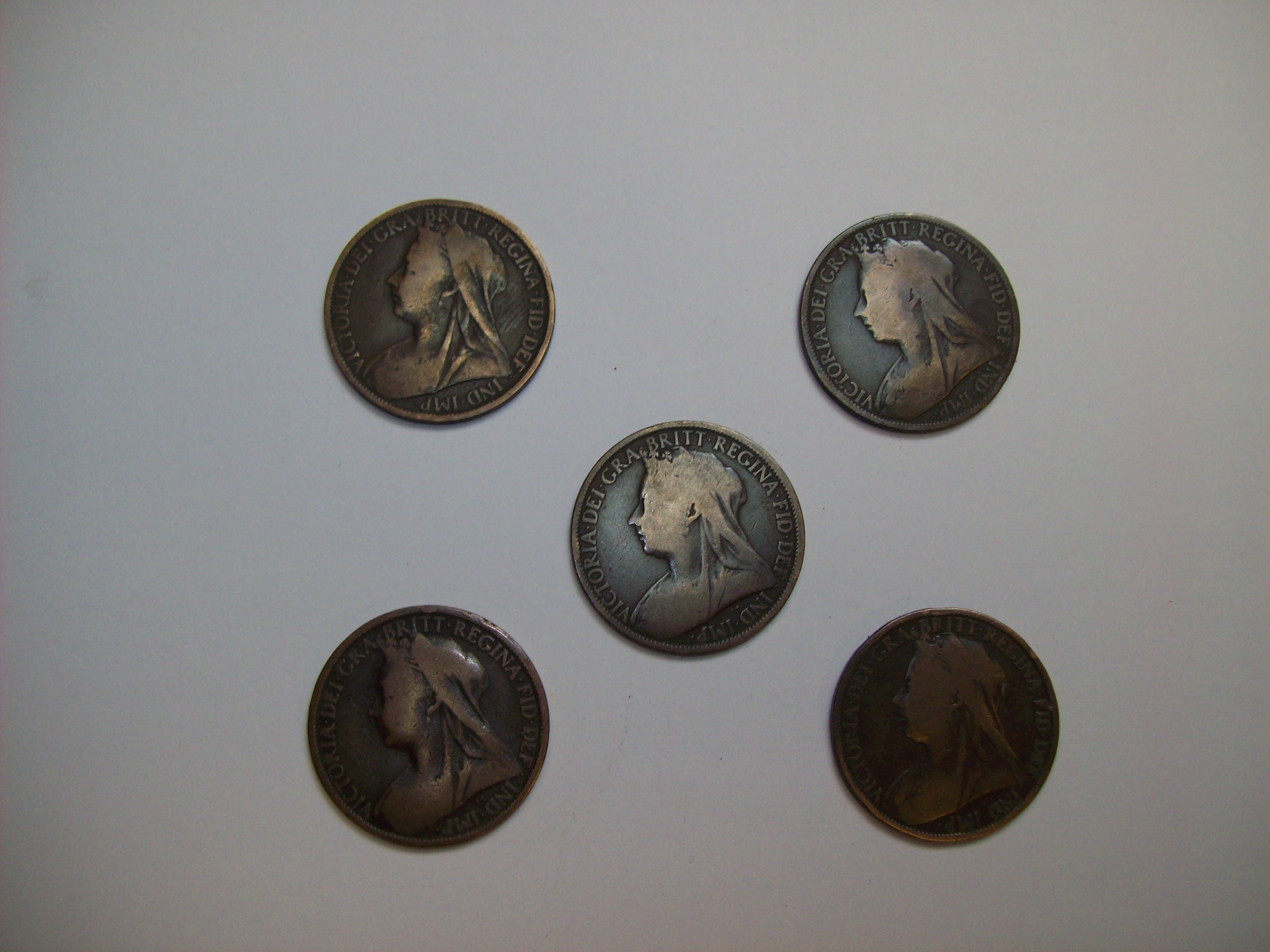 Expanded Victorian Penny Shell plus 4 matching coins
